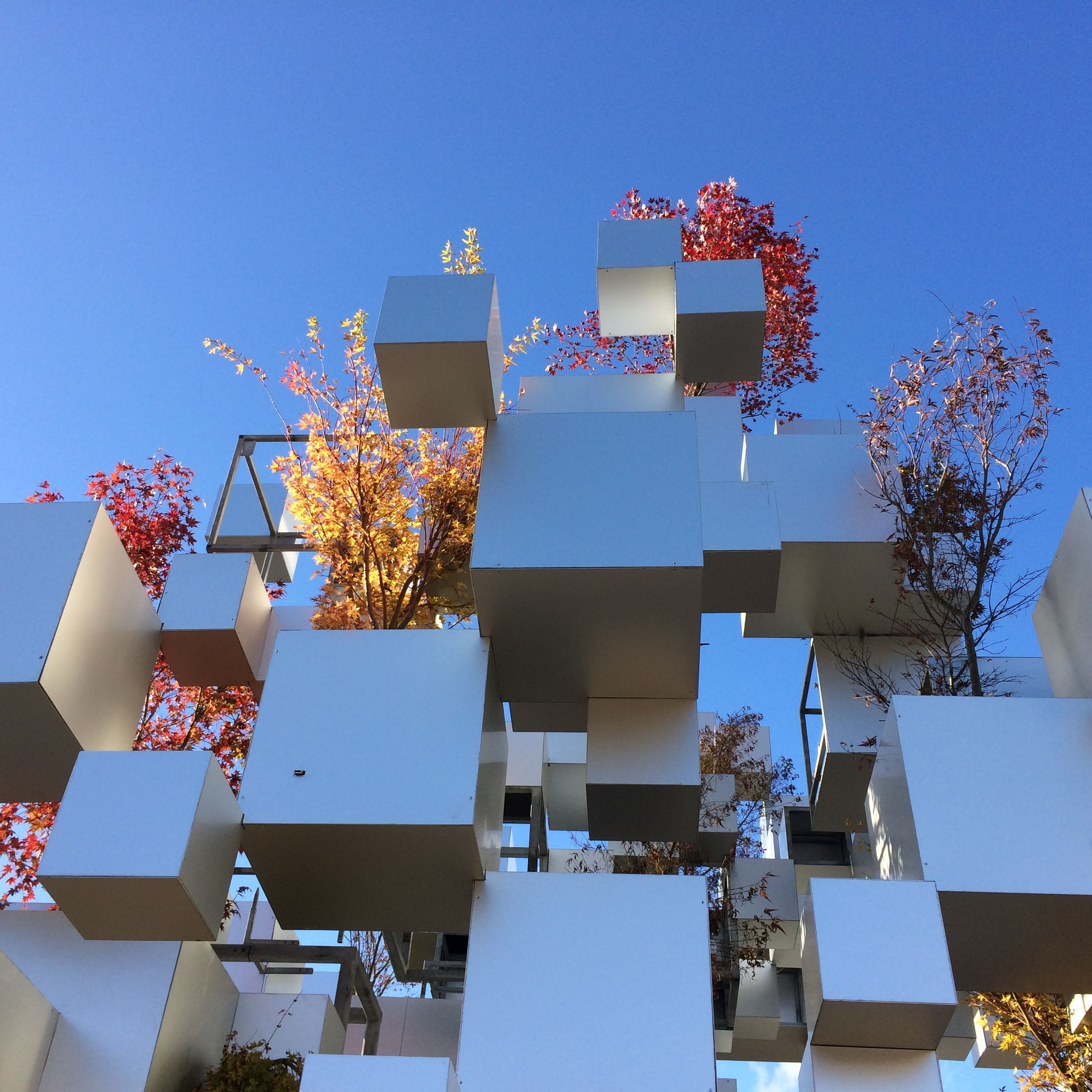 Japanese architect Sou Fujimoto has created an installation in