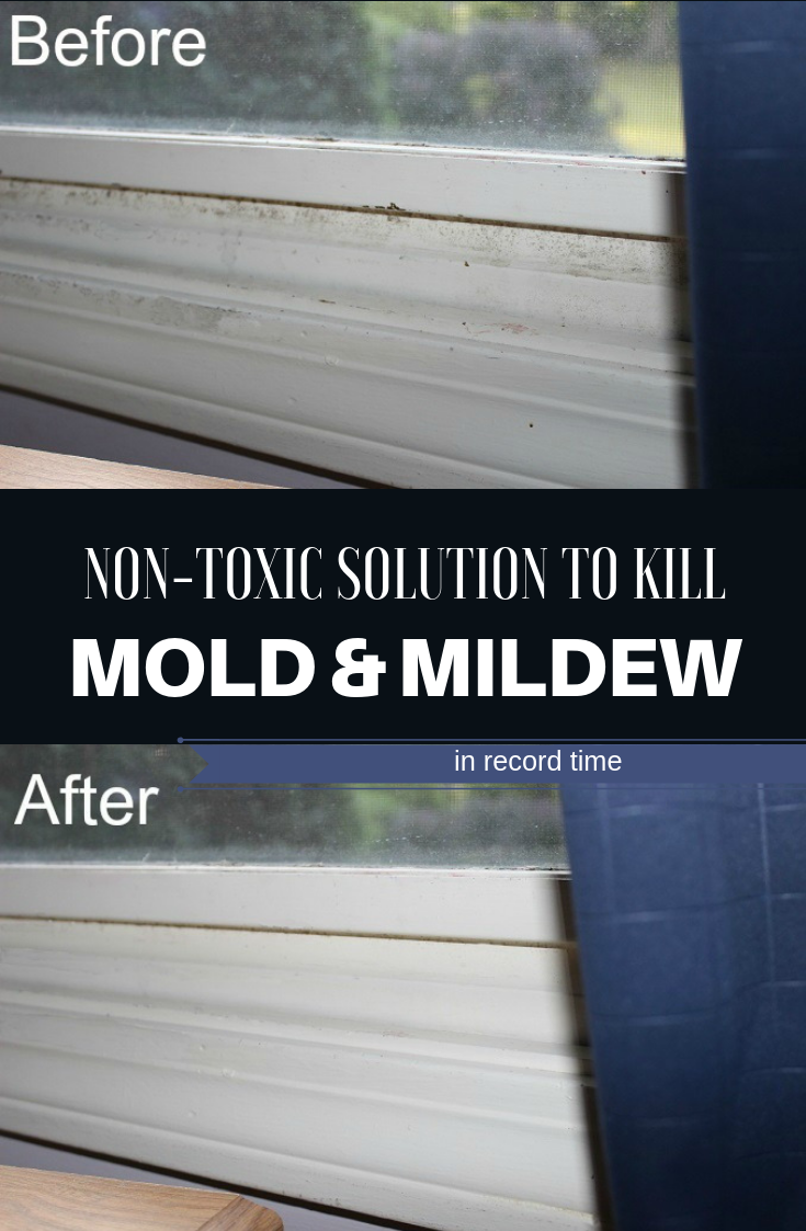 Non Toxic Solution To Kill Mold And Mildew In Record Time