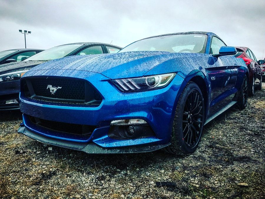 2017 ford mustang gt lightning blue with performance package by joshuaprieto yeah i 39 m that. Black Bedroom Furniture Sets. Home Design Ideas