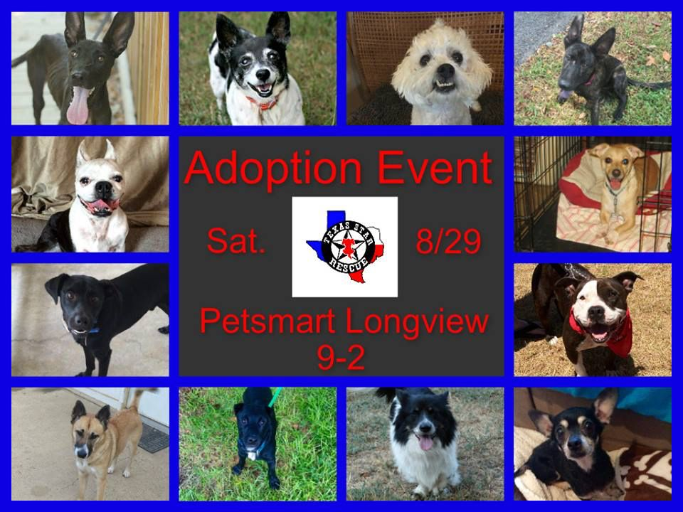 Come see us today at PetSmart from 9am-2pm and adopt your