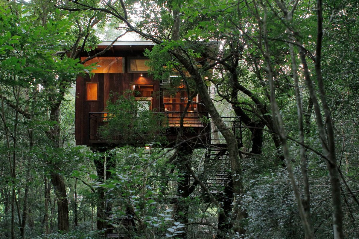 Tree House Tree Top Cabin Cu 241 A Piru Lodge Pinterest