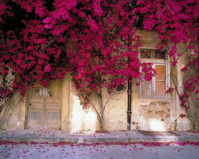 Beautiful spring desktop wallpaper spring flower wallpaper combine beautiful spring desktop wallpaper spring flower wallpaper combine flowers wallpaper pink peach spring mightylinksfo