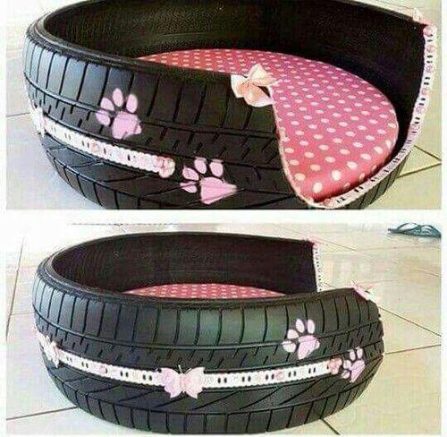 Dog basket of a car tire!