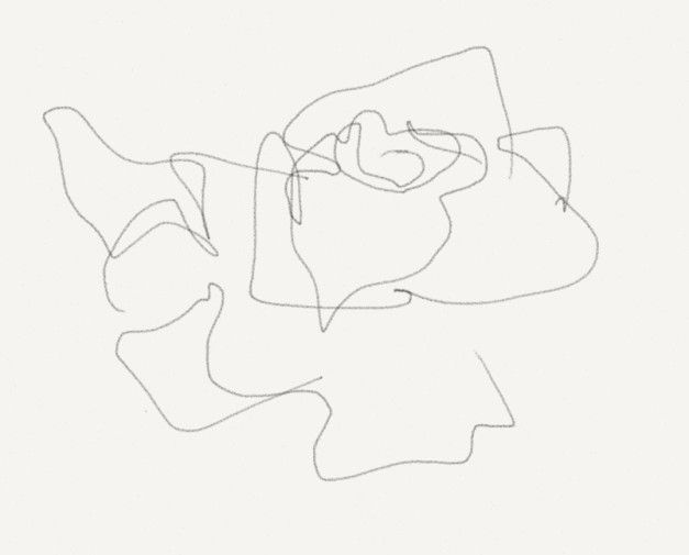 Contour Line Drawing Rose : Blind contour drawing of a rose google search wild hotel