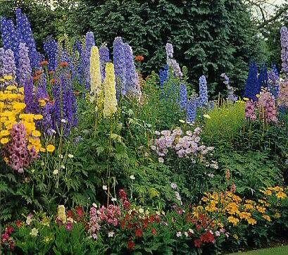 Gardening In Kc Beautiful Flowers Garden Beautiful Gardens