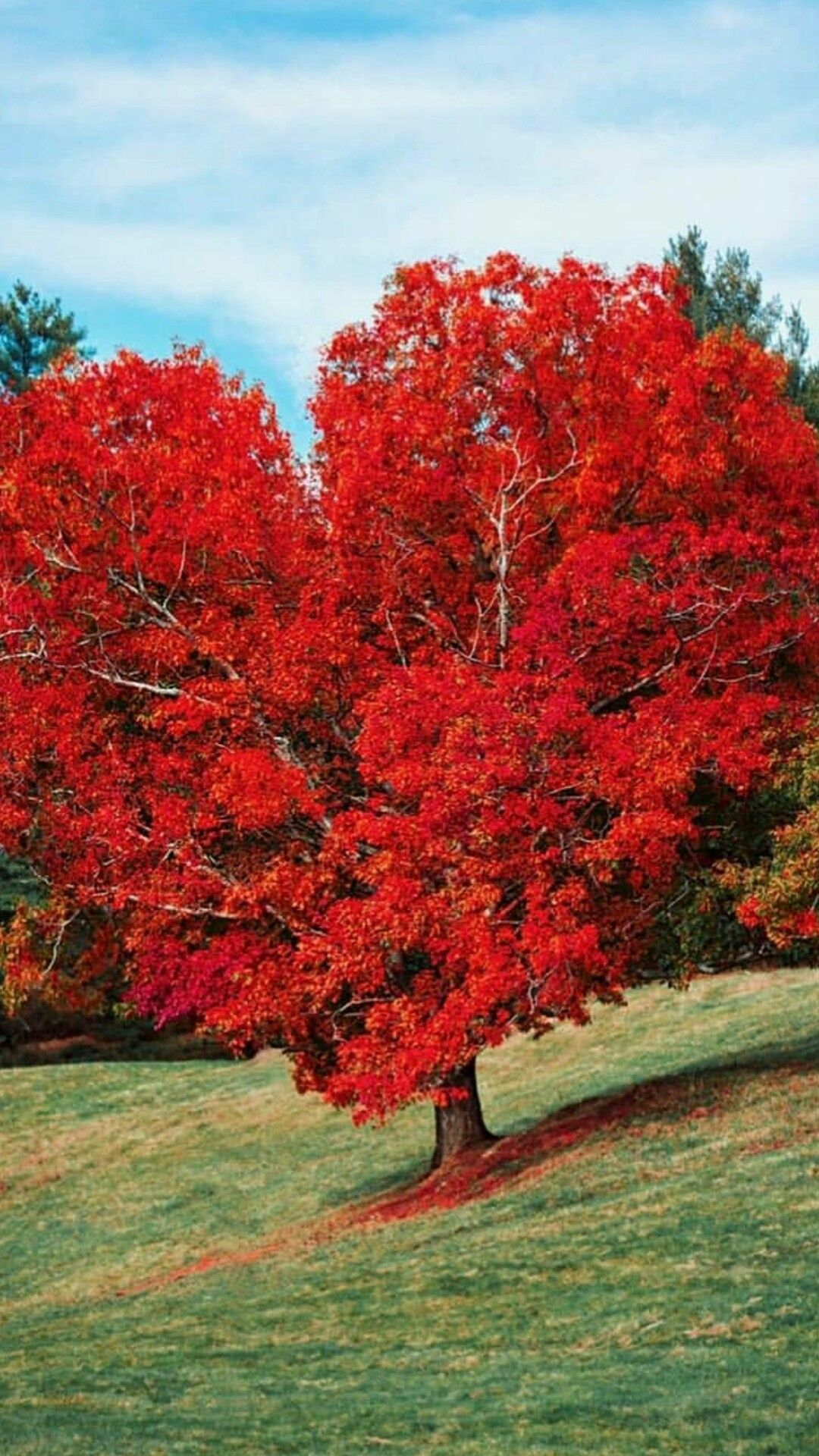 Eart Of Autumn Fall Pictures Beautiful Nature Autumn Scenery