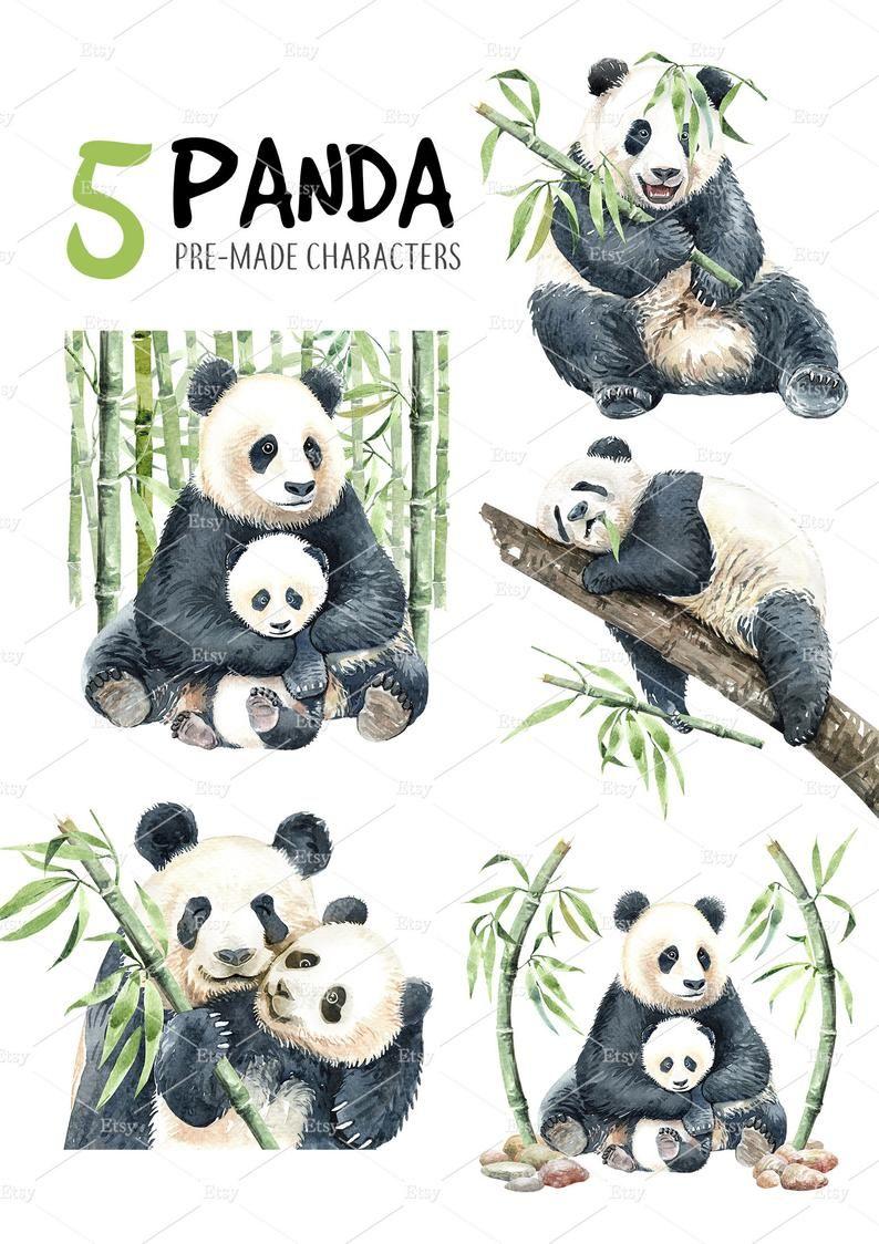 Panda Watercolor Animal Clipart Bamboo Forest Baby Panda And Mom Leaves China Nature Stone Realistic Wild Frame Cute Panda Illustration Animal Clipart Watercolor Animals