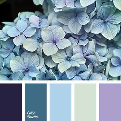 color palette #3240 (color palette ideas)   baby blue colour, blue