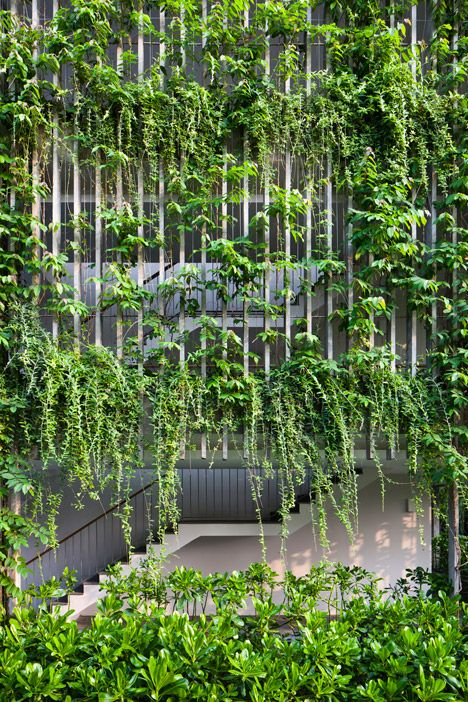 Vo Trong Nghia plans trio of towers covered in bamboo plants and linked by bridges