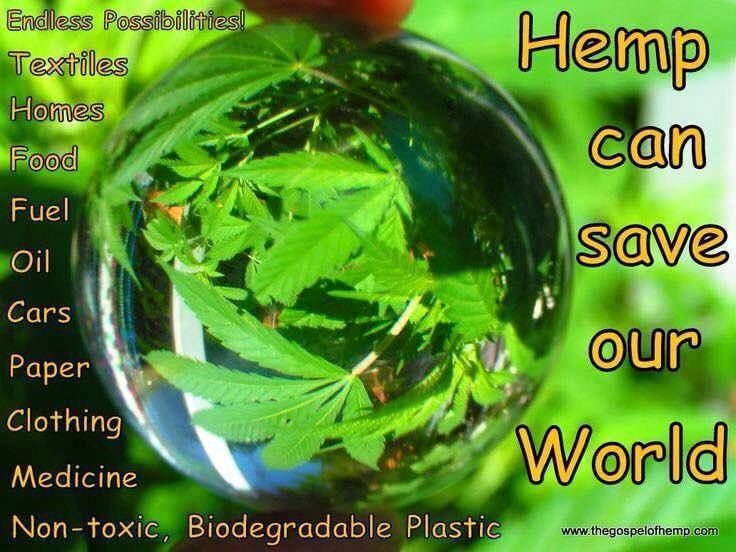 Ways hemp can save our world.