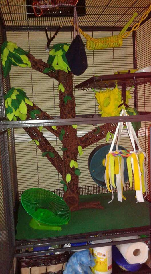 Sugar glider cage tree