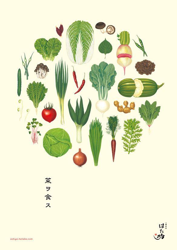 Vegetable,Botanical,illustration  Copyright(C)Hiroyuki Yamada.All Right Reserved.