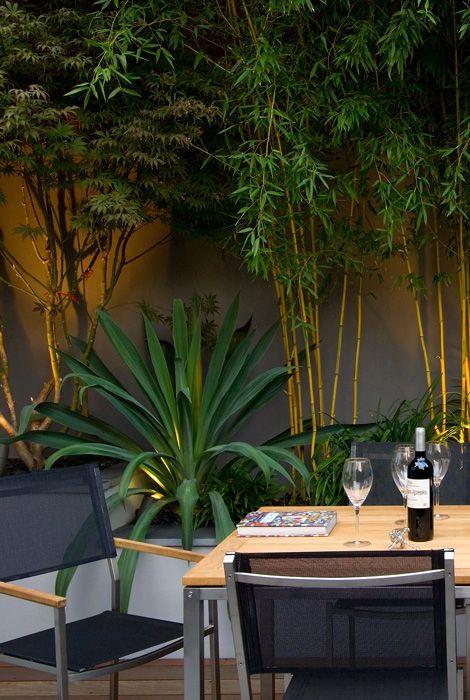 privacy and contemporary garden seating Jardines Pinterest - diseo de jardines urbanos