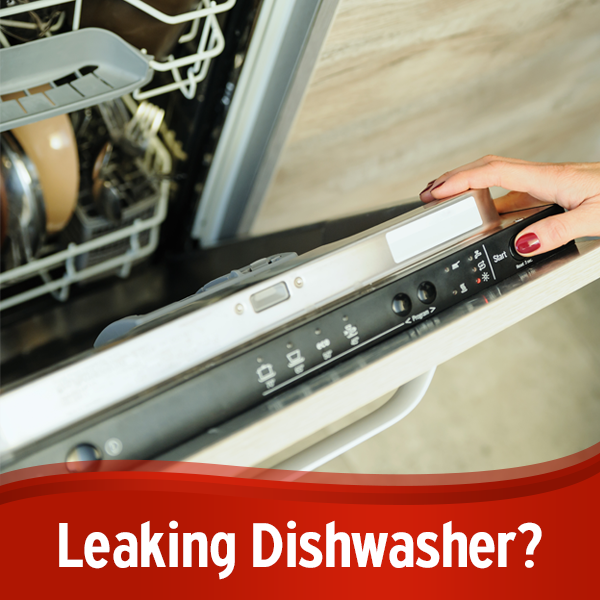 Found A Puddle On The Floor After You Ran The Dishwasher Discover The Top 5 Reasons Your Dishwasher Leak Dishwasher Leaking Dishwasher Diy Kitchen Appliances