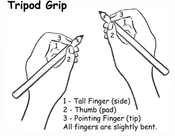 How To Hold A Pencil Correctly