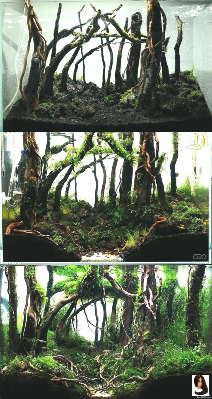 45p Ada Aquarium Aquascape Diorama Forest Landscap Moss Planted Tank Forest Aquascape Aquarium Aquarium Landscape Nature Aquarium Aquascape Aquarium