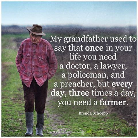 Image result for every day three times a day farmer quote