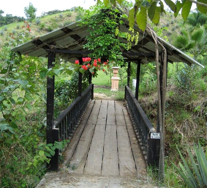The puerto vallarta botanical gardens and one of its - Puerto vallarta botanical gardens ...