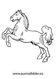 bildergebnis für pferdekopf ausmalbilder | ausmalbilder tiere, ausmalbilder pferde, ausmalbilder