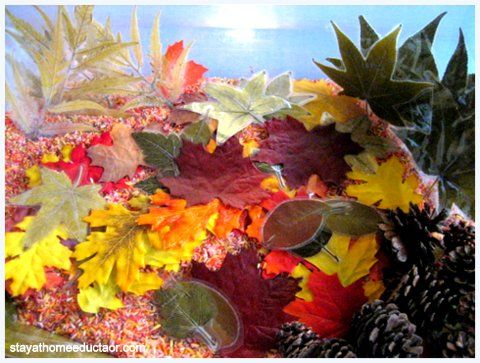 Preschool Co-op Week 5 - Autumn/Apple Theme