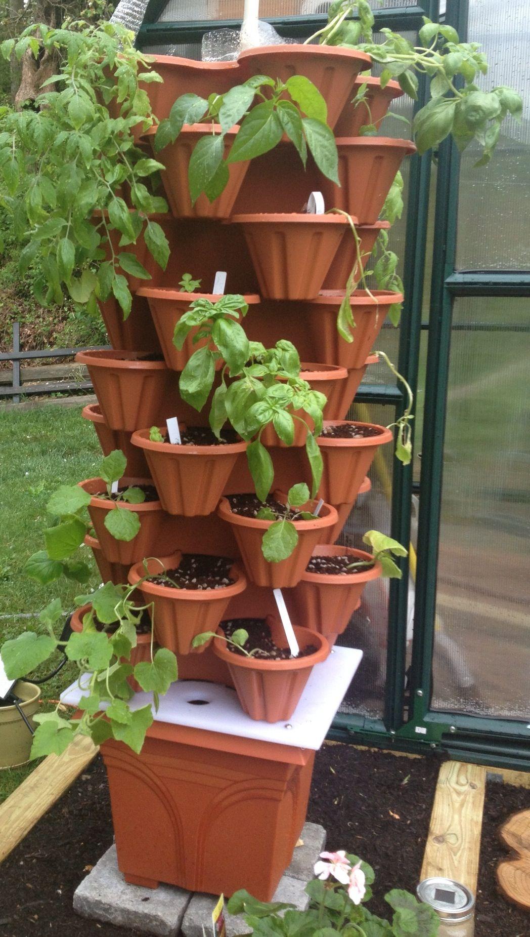 Homemade hydroponic tower | ✌ Herbs & Garden | Pinterest ...