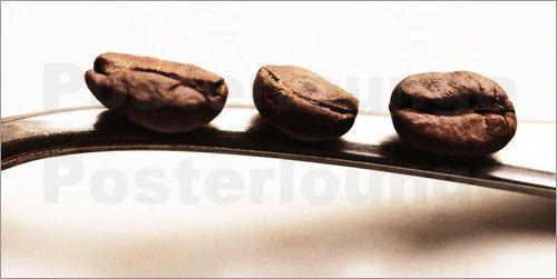 Küchenbild - Die drei Kaffeebohnen Fotografie von Kaffeebohnen - bild f r die k che