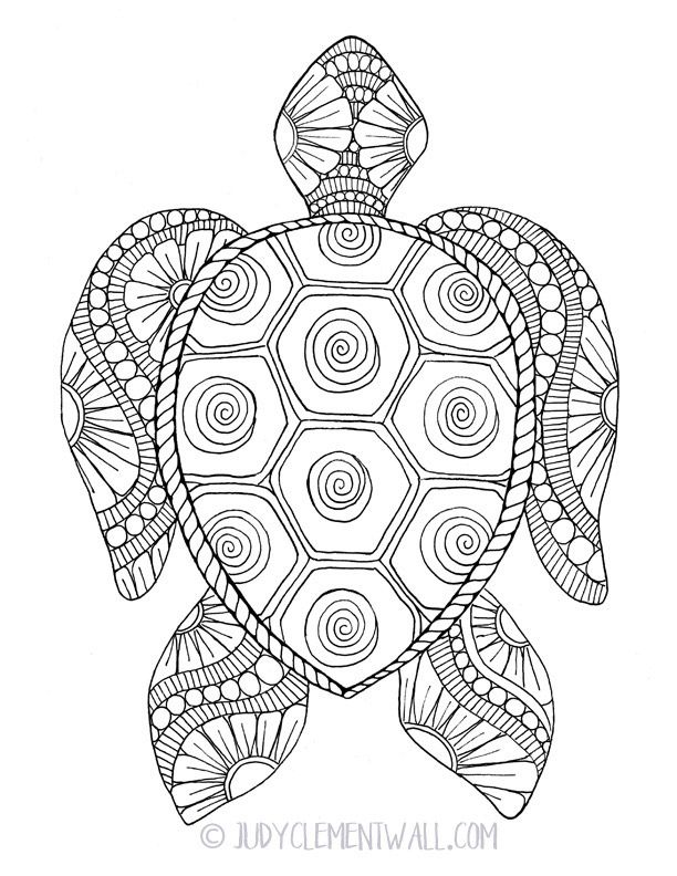 Coloring Pages | Turtle coloring pages, Cute coloring ...