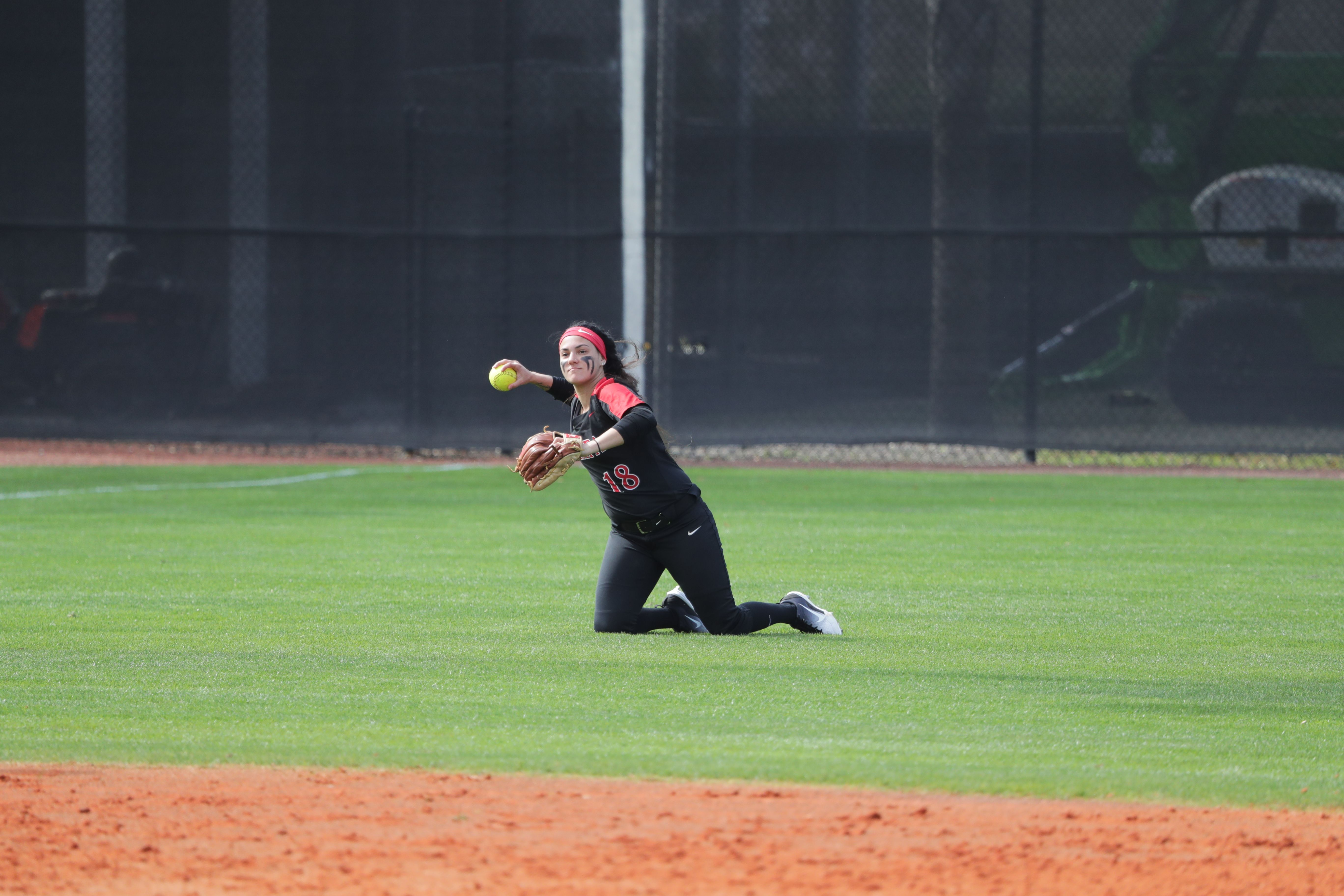 University Of Tampa Softball University Of Tampa Tampa Softball