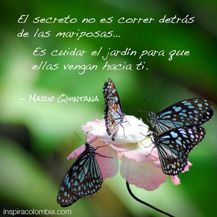 El secreto no es correr detr s de las mariposas es for Amor en el jardin