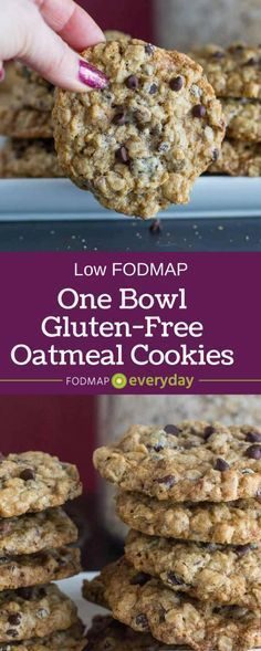 One-Bowl Oatmeal Chocolate Chip Cookies Our One-Bowl Oatmeal Chocolate Chip Cookies are gluten-free, low FODMAP and easy enough for beginner bakers to make. They whip up by hand in a bowl - no mixer needed! Oatmeal Chocolate Chip Cookies Our One-Bowl Oatmeal Chocolate Chip Cookies are gluten-free, low FODMAP and easy enough for beginner bakers to make. They whip up by hand in a bowl - no mixer needed!Our One-Bowl Oatmeal Chocolate Chip Cookies are gluten-free, low FODMAP and easy enough for beginner bakers to make. They whip up by hand in a bowl - no mixer needed!
