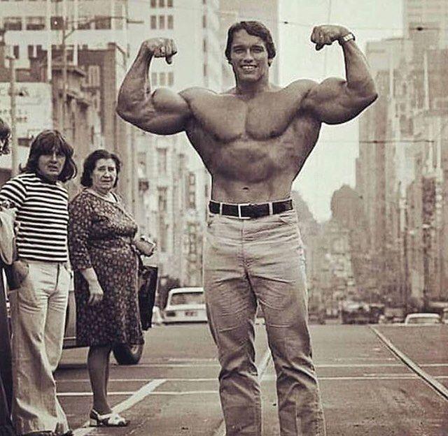 Arnold Schwarzenegger Net Worth, Wife, Age, Height, Wiki ...
