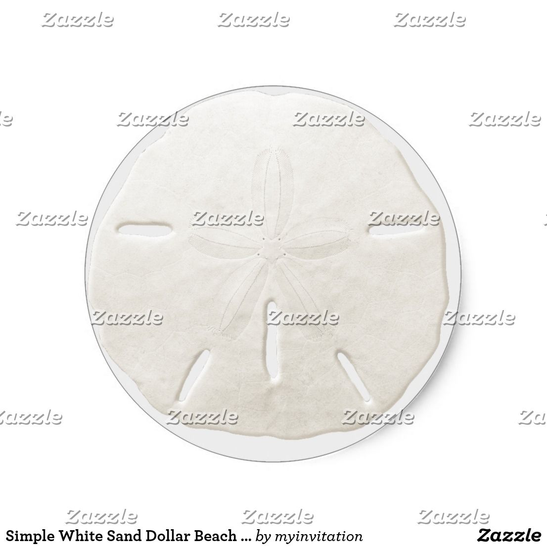 Simple White Sand Dollar Beach Wedding Favor Classic Round Sticker ...
