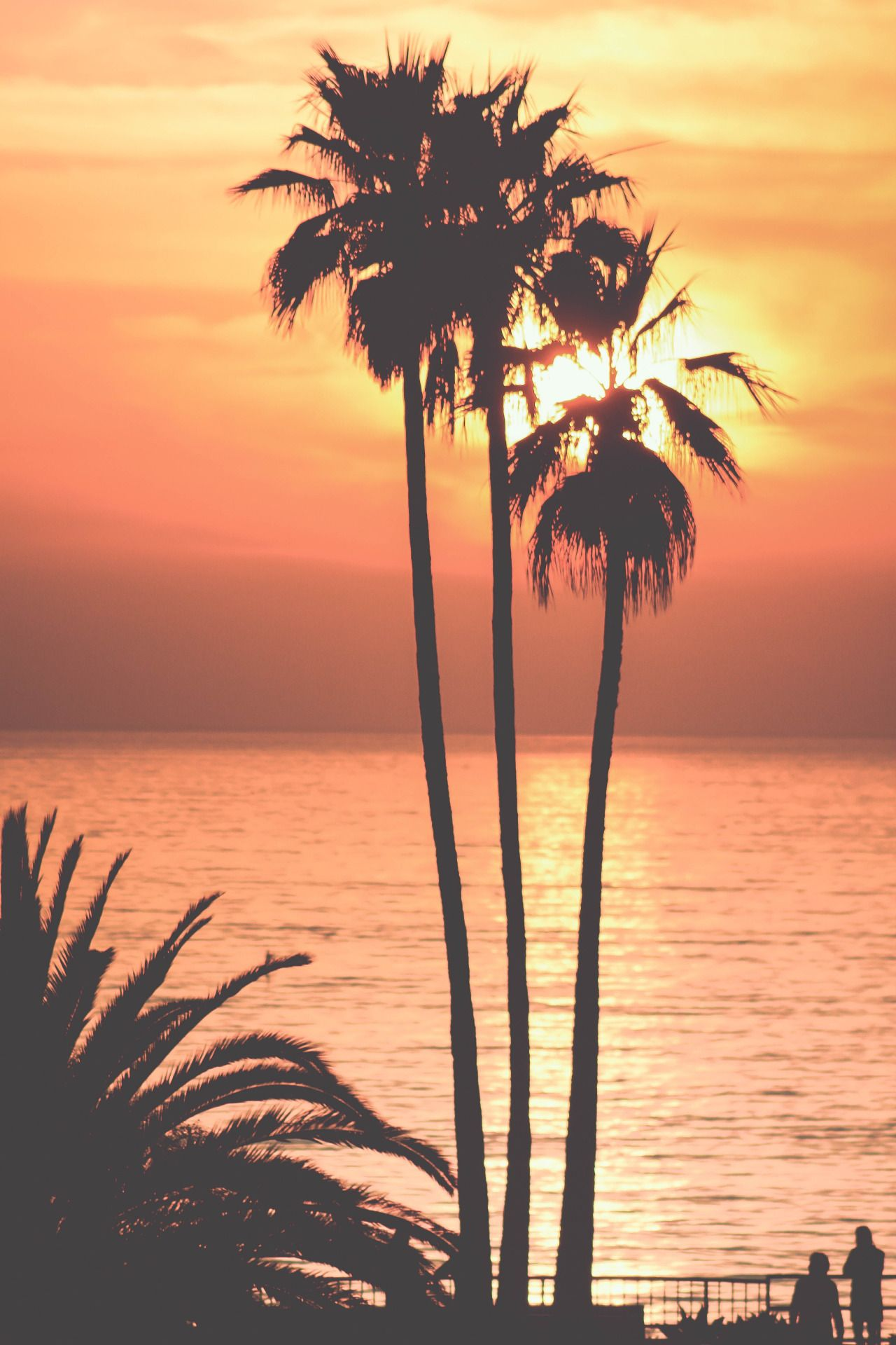 Via Natureac Natureactumblr Post 131683281308 Sunset Beach CaliforniaCalifornia