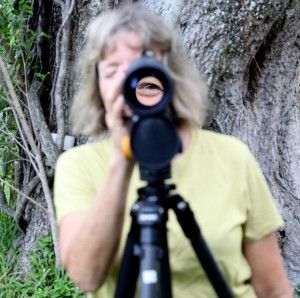With a month to go, will first annual Treasure Coast Birding Festival fly?