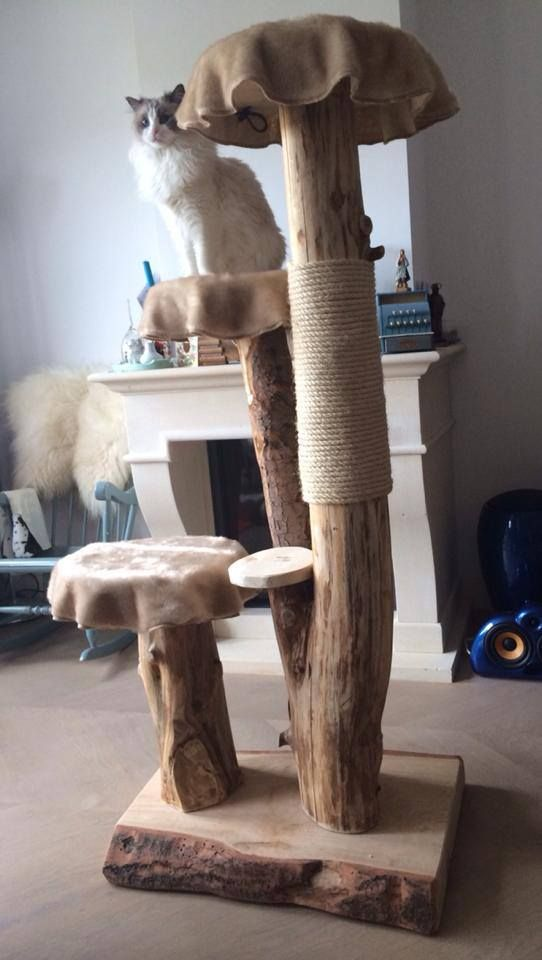 DIY:  Handgemaakte boomkrapbaal - boomstam krabpaal - houten krabpaal - cat tree - wooden cat tree