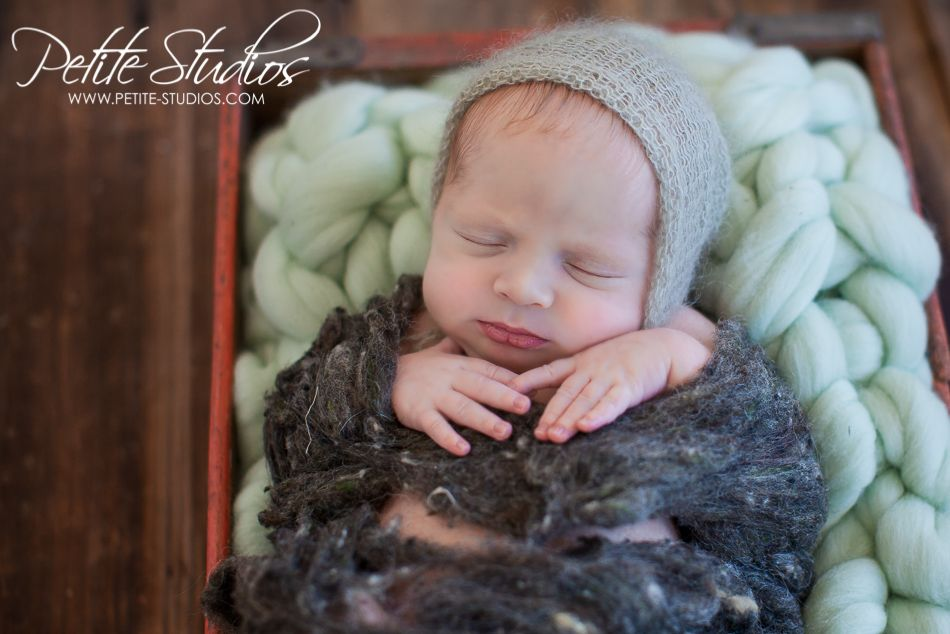 Naperville il newborn infant baby photographer petite studios newbornpictures babyboy gray