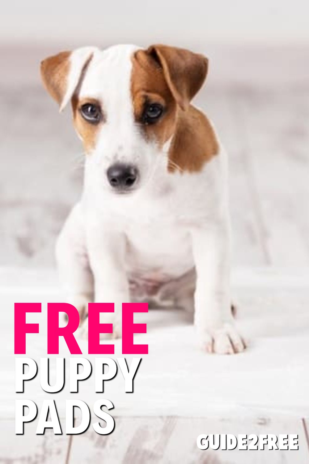 Free Puppy Pad Sample Free Puppies Puppy Pads Puppies
