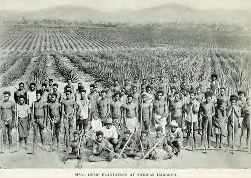 Pin On Papua New Guinea History