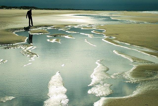 Doñana National Park, Andalucia, Spain