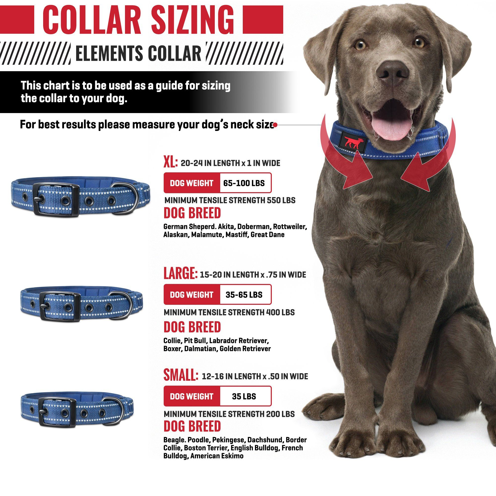Pin On Dog Leashes Harnesses Collars