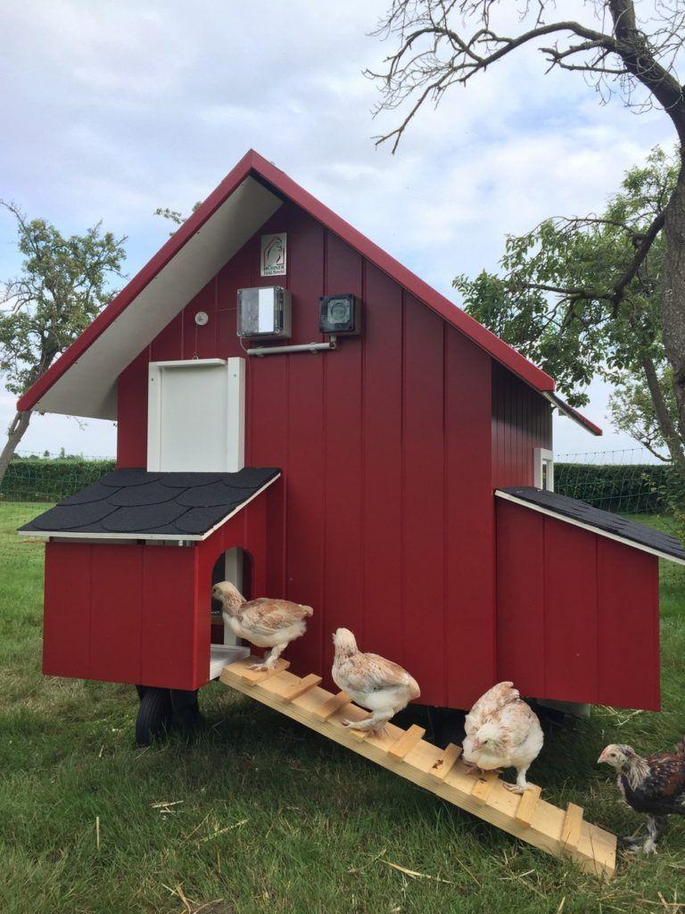 Mobiles Hühnerhaus Hühnerhaus, Hinterhofhühner