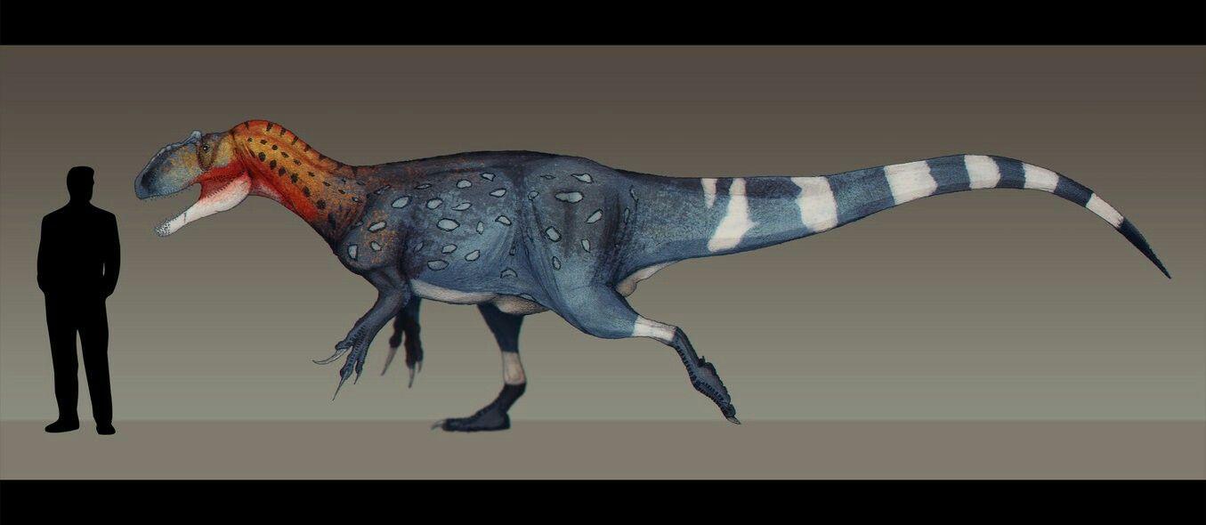 23++ Allosaurus feathers info