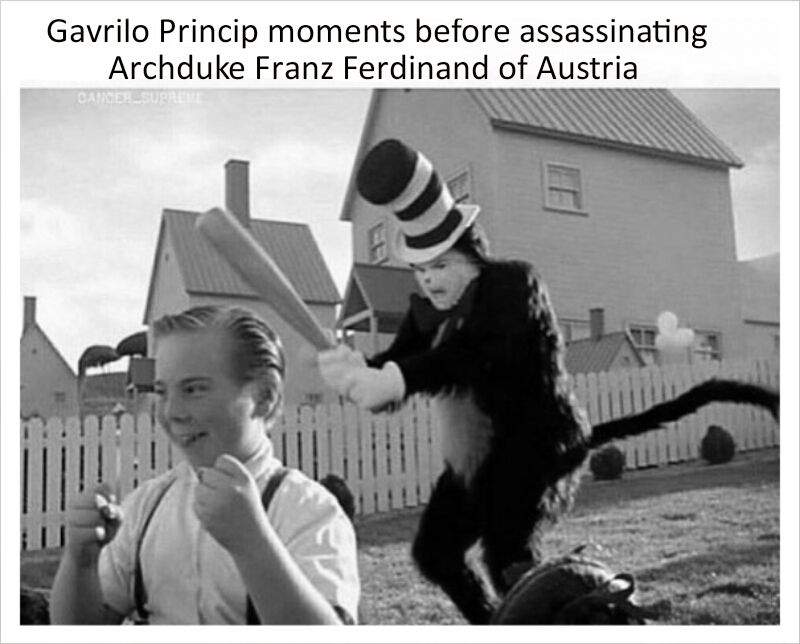 Cat In The Hat Memes Have A Lot Of Potential Might Be The Best Time To Invest Historical Memes History Jokes History Memes