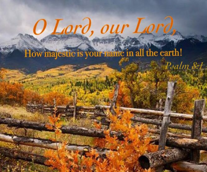 O Lord, our Lord, how majestic is your name in all the earth! Psalm 8:1