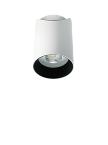 Brightgreen D550 Shx Curve A Flexible Surface Mounted Led Downlight Led Lights Lighting Downlights