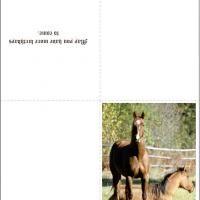 Printable Horse Birthday Card