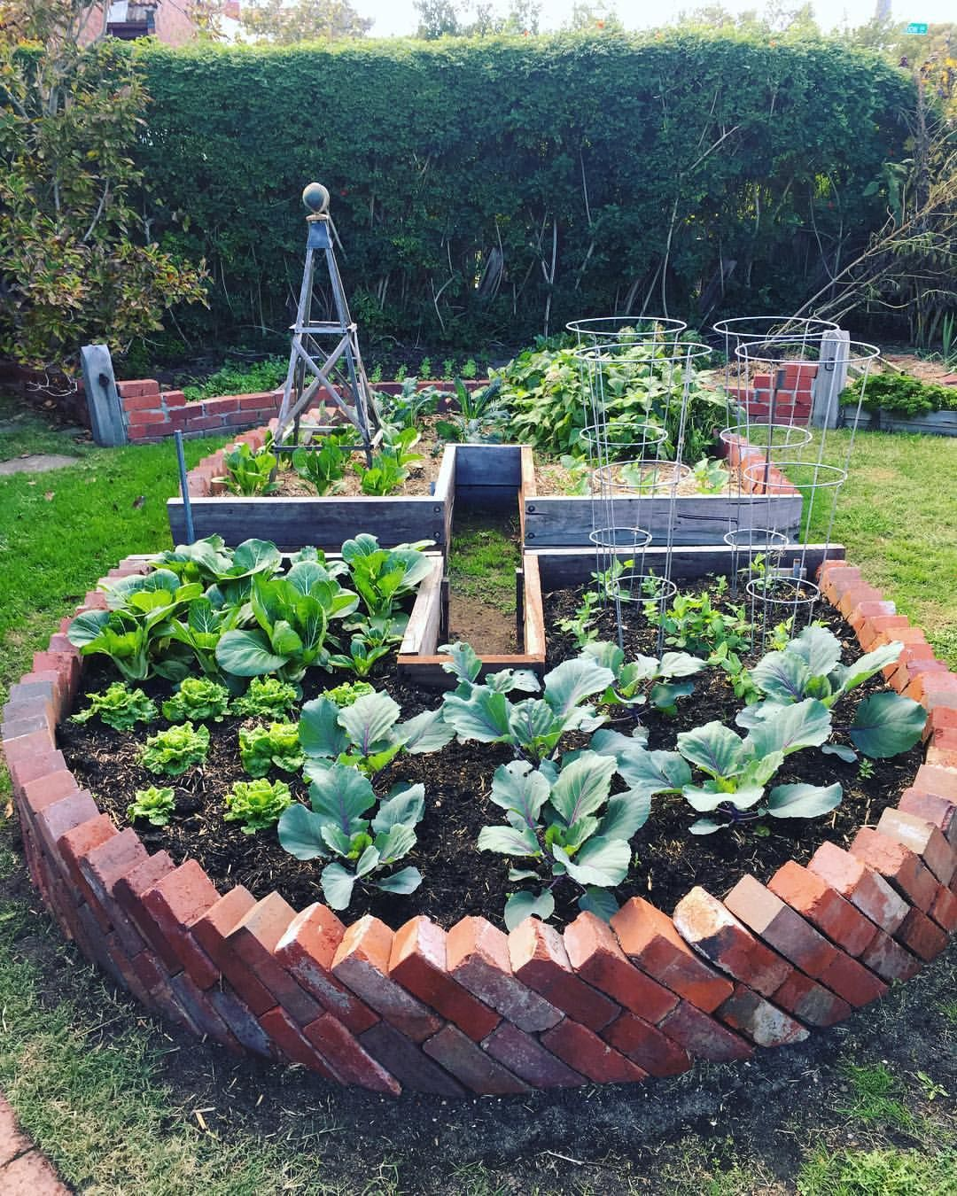 11f10f0e17565ca738b54685228643e9 - Sustainable Gardening In The City Of Melbourne