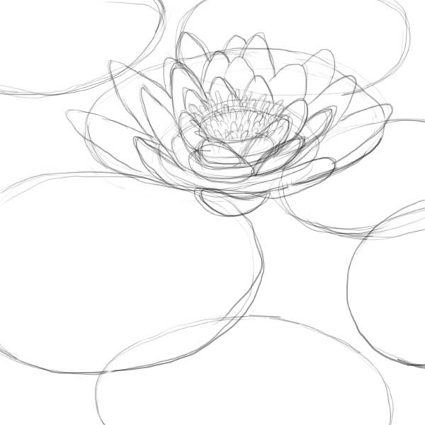 How to Draw a Lotus, Water Lily | Monet | Pinterest | Dibujar ...