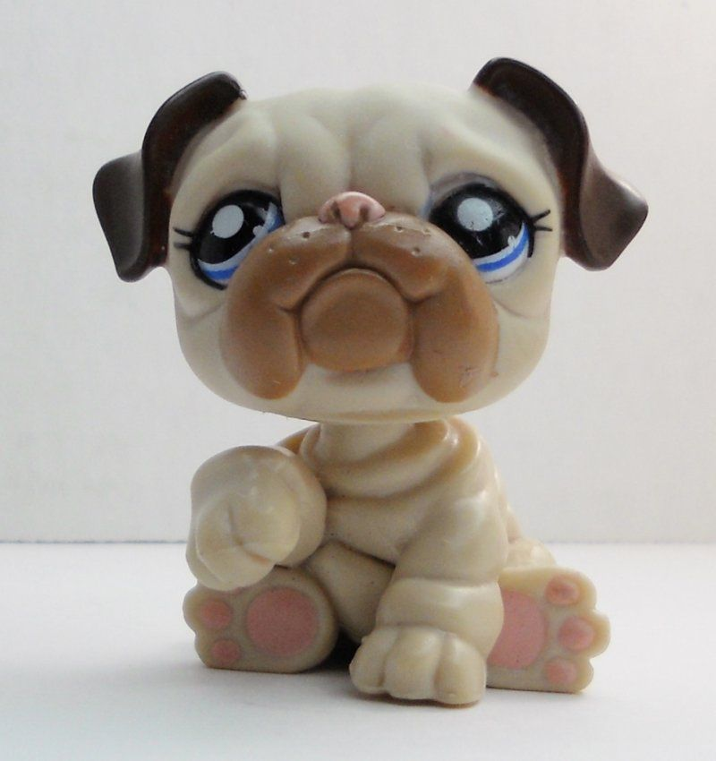 Littlest Pet Shop English Bulldog 1765 Brown Creamy Tan Dog Loose