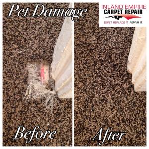 Riverside Pet Damage Repair